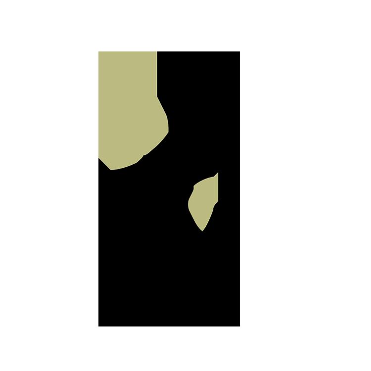 logo Il cantico della natura
