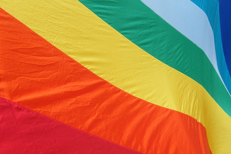 Dettaglio della locandina: bandiera della pace