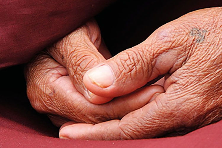 Particolare della locandina: mani di donna anziana