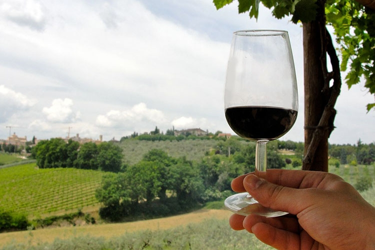 Paeseggio collinare con calice di vino in primo piano