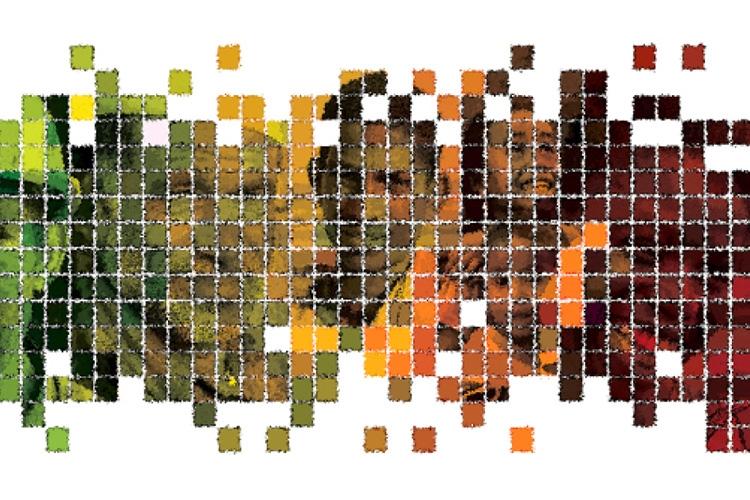 particolare della locandina: alcuni volti dietro ad una grafica geometrica