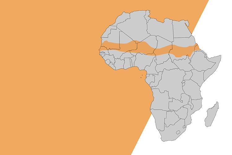 mappa stilizzata dell'Africa