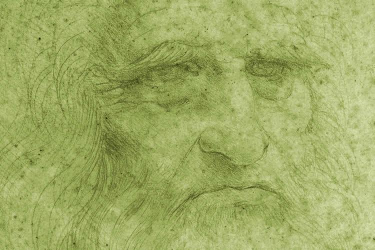 particolare di autoritratto di Leonardo