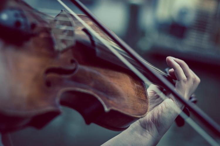 immagine di violino