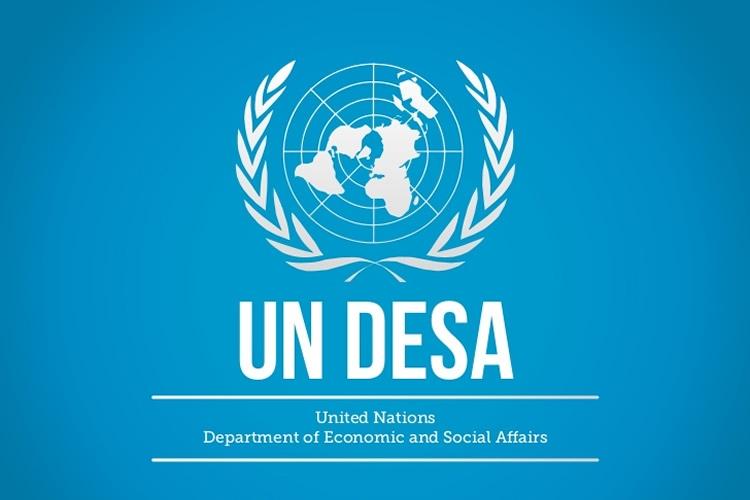 Logo UN DESA